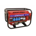Generador trifásico gasolina 3000W Serie HD