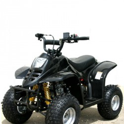 Quad junior 90 cc R/C