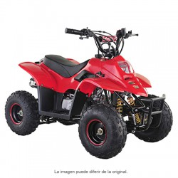 Quad junior 110 cc Raptor