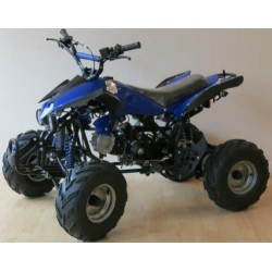 Quad junior 110cc Polaris