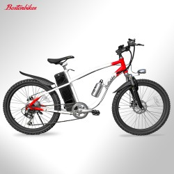 """RESERVA Bicicleta eléctrica Bostonbikes Everest 24"""""""