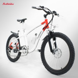 "Bicicleta eléctrica Bostonbikes Everest 24"" Usada para Renting"