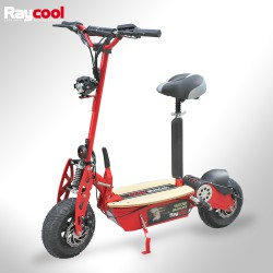 Patinete eléctrico Raycool 1500W Brushless