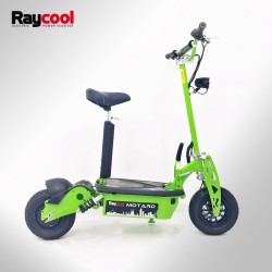 Patinete eléctrico Raycool Motard 1000W Brushless HUB