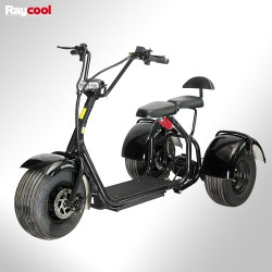 Patinete eléctrico Raycool 1500W Chopper s3