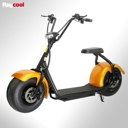 Patinete eléctrico Raycool 1000W Chopper S1