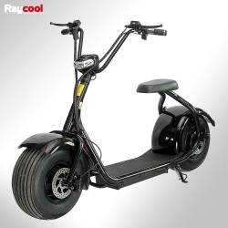 Patinete eléctrico Raycool 1000W Chopper
